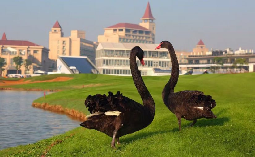 上海美蘭湖ゴルフクラブ(マスターコース)